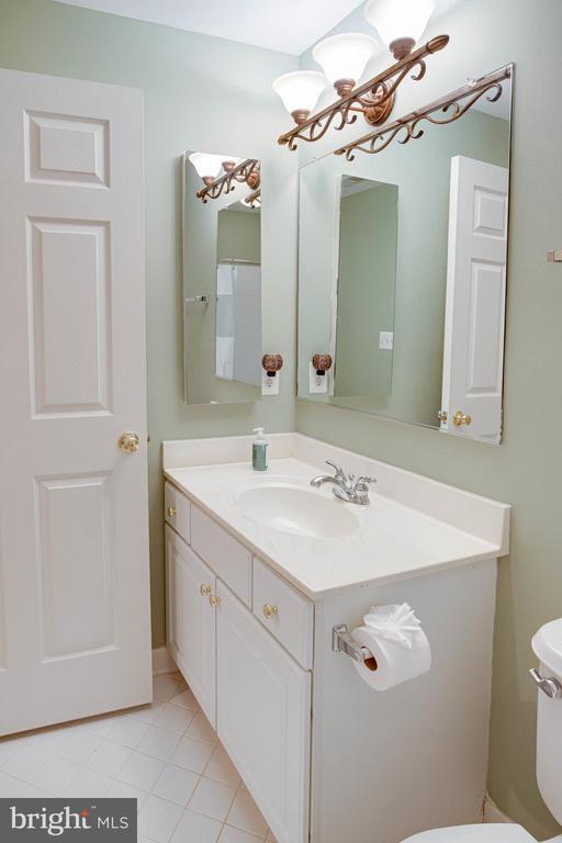 Lower Level Full bath - 25891 MCKINZIE LN, CHANTILLY