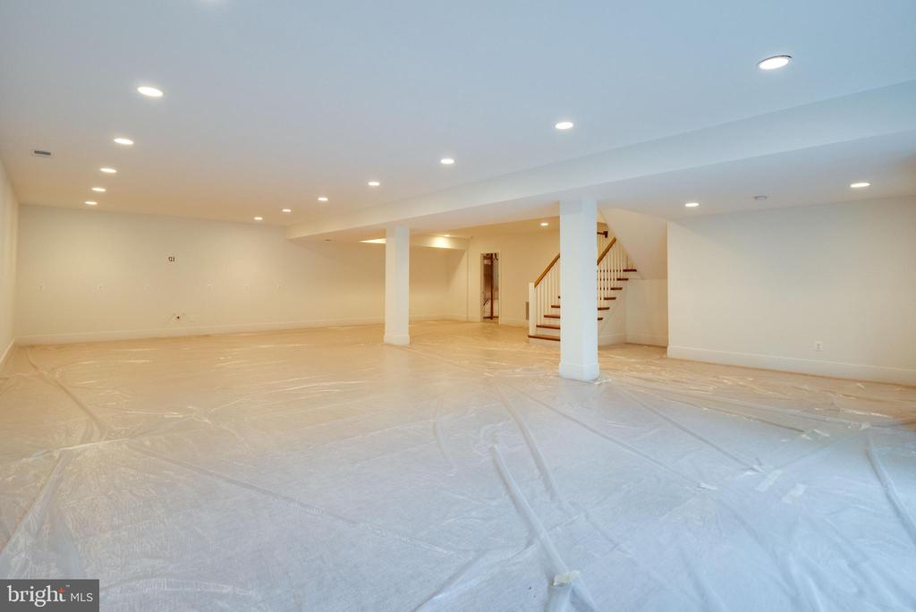Another view  of the lower level - 635 FREDERICK ST SW, VIENNA