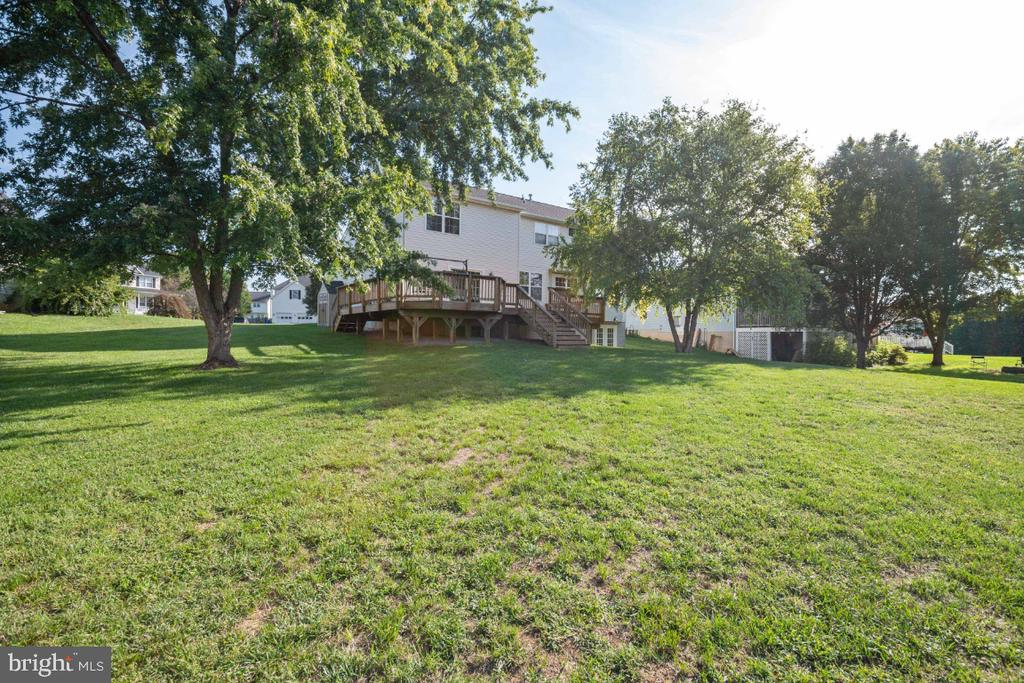 The Large Back yard! - 513 EWELL CT, BERRYVILLE