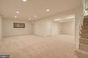 Recreation room - lower level - 9706 SPRING RIDGE LN, VIENNA