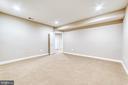 Lower level bonus room - 18362 FAIRWAY OAKS SQ, LEESBURG