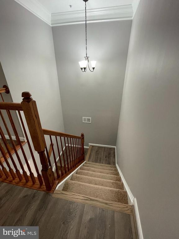 Stairs leading to upper floor. - 43523 MAHALA ST, LEESBURG