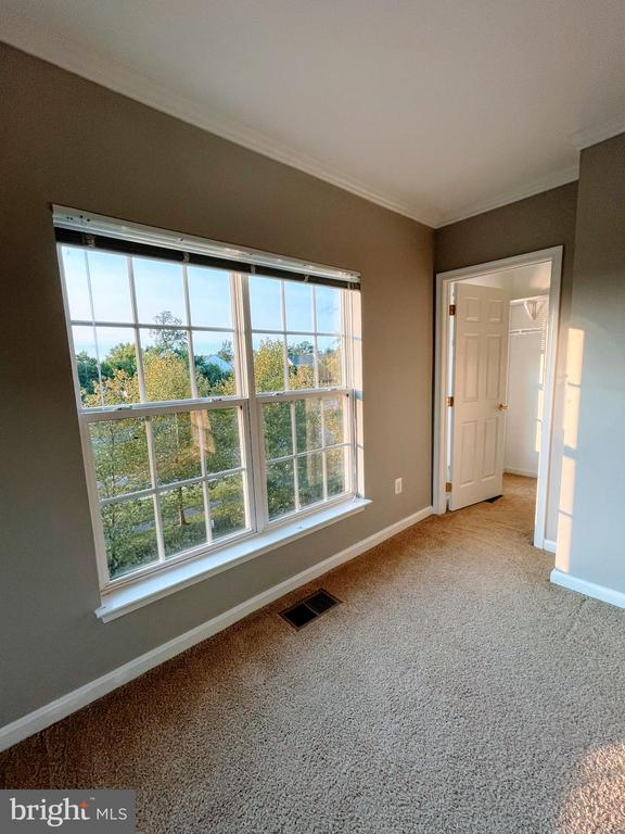 Walk-in closet. - 43523 MAHALA ST, LEESBURG