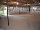 Spacious walkout basement - 121 SYLVAN LN, HARPERS FERRY