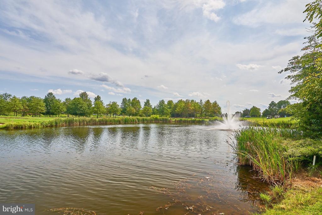 One of Several Ponds - 15231 ROYAL CREST DR #104, HAYMARKET