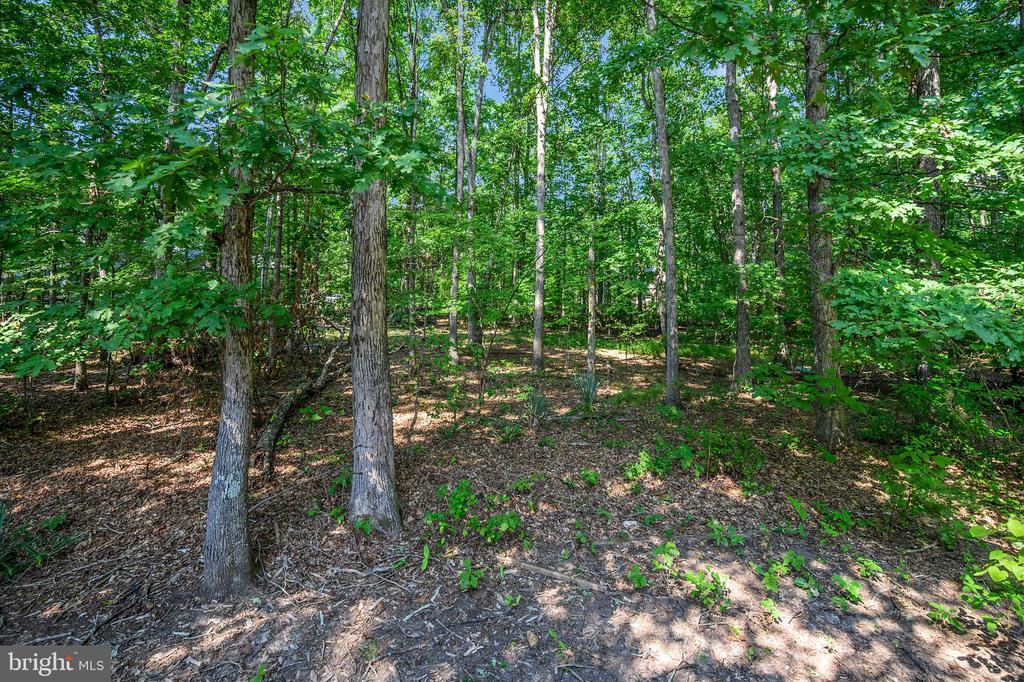 woods overlook - 222 YORKTOWN BLVD, LOCUST GROVE