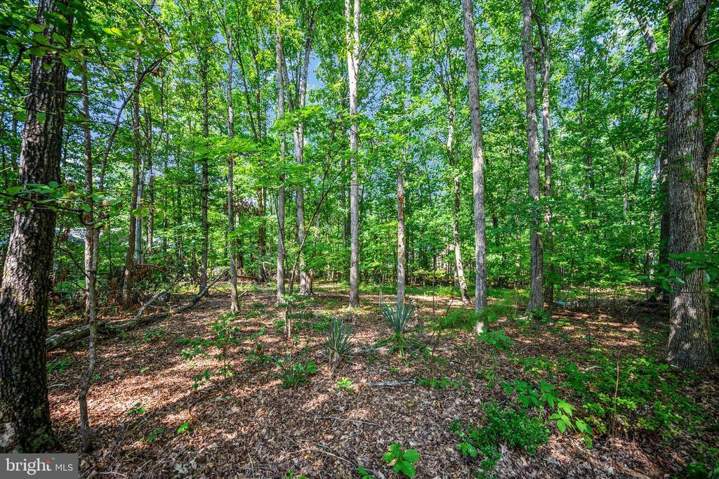 wooded privacy lot - 222 YORKTOWN BLVD, LOCUST GROVE