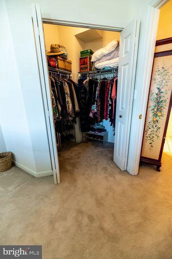 Walk in closet in 2nd Bedroom - 19375 CYPRESS RIDGE TER #711, LEESBURG
