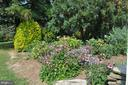 And there's natural color in every season - 11690 FREDERICK RD, ELLICOTT CITY