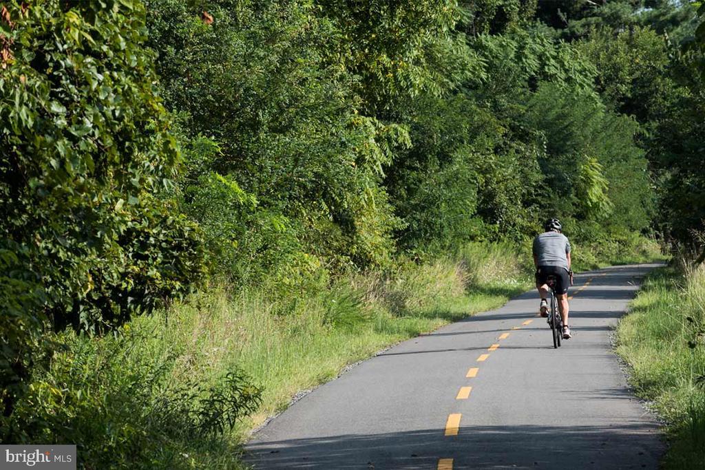 Minutes to the W & OD biking/hiking trail - 505 ASPEN DR, HERNDON