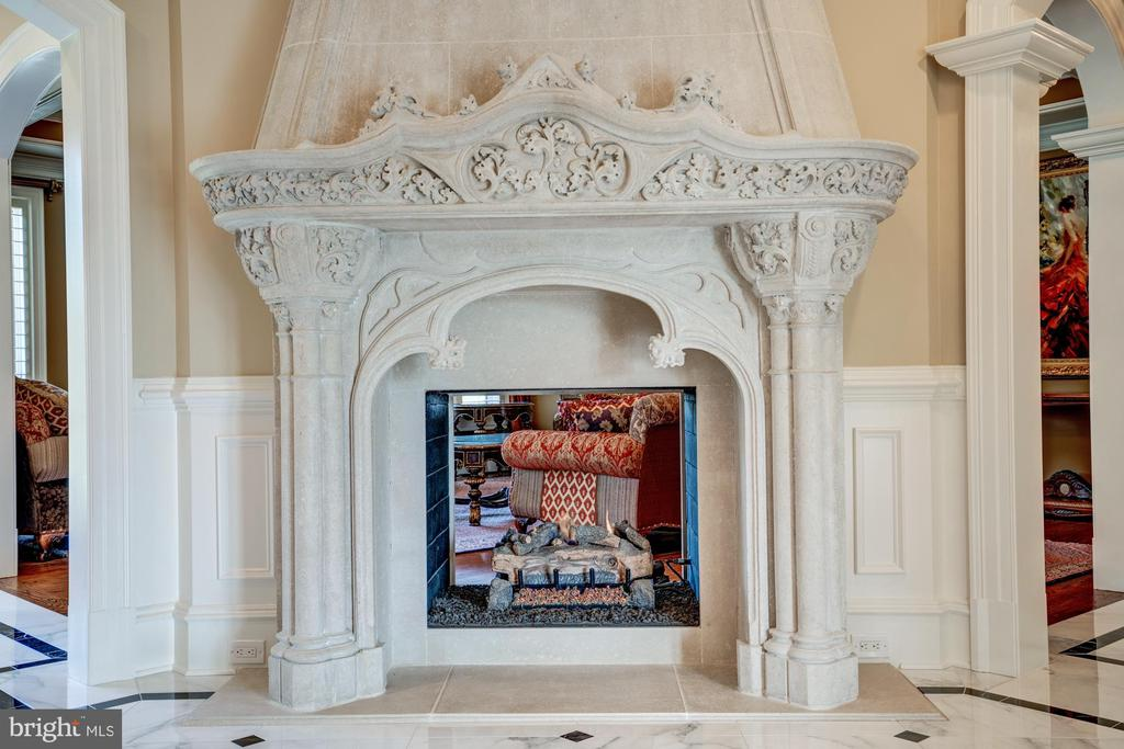 Stunning Double-Sided Fireplace - 40483 GRENATA PRESERVE PL, LEESBURG