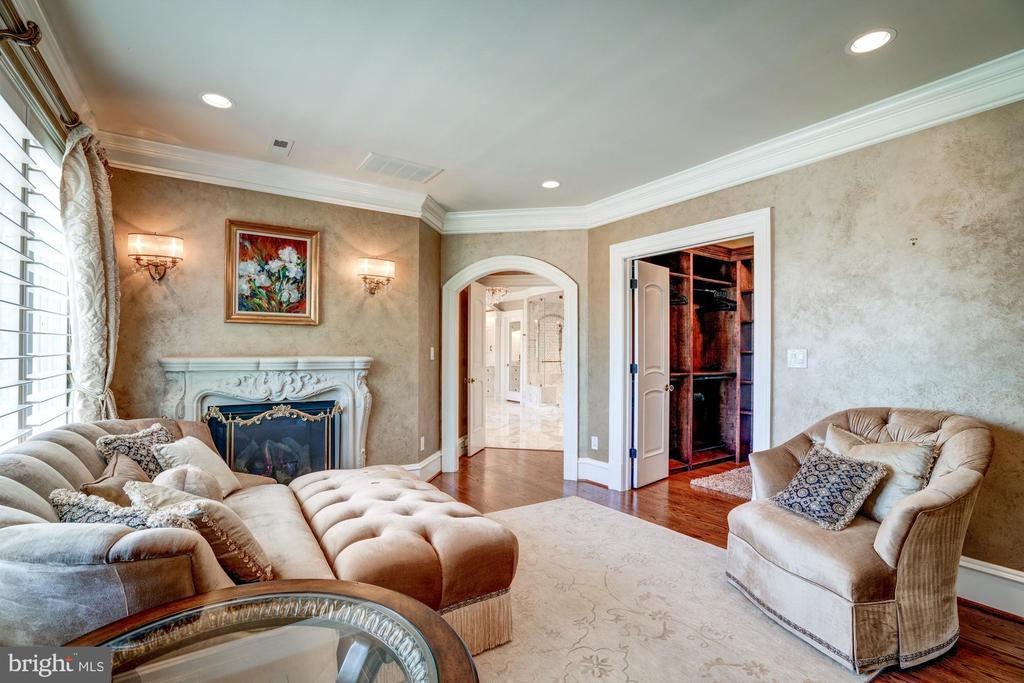 Sitting Room with Fireplace - 40483 GRENATA PRESERVE PL, LEESBURG