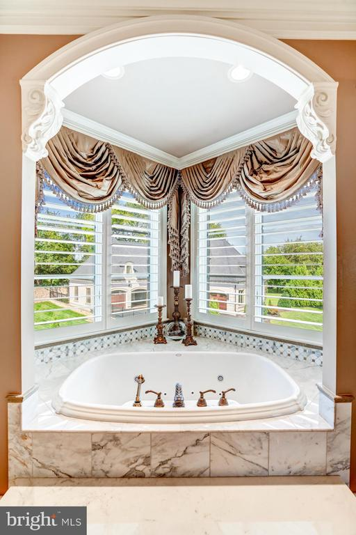 Relax in this Luxurious Soaking Tub - 40483 GRENATA PRESERVE PL, LEESBURG