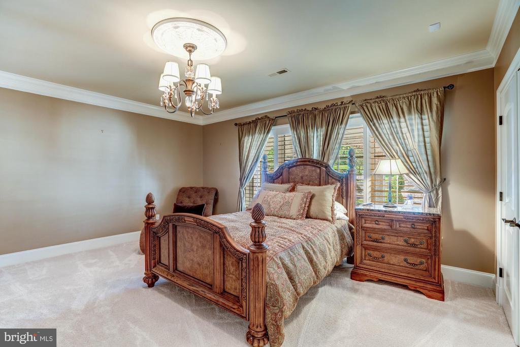 Lower Level Bedroom with En Suite Bath - 40483 GRENATA PRESERVE PL, LEESBURG