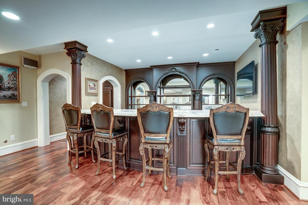 Luxury Bar - Well Equipped & Ready to Serve - 40483 GRENATA PRESERVE PL, LEESBURG