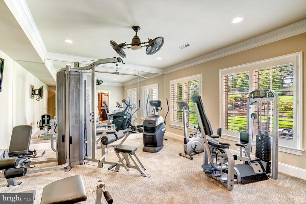 Serving All of Your Fitness Needs - 40483 GRENATA PRESERVE PL, LEESBURG