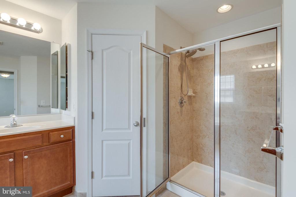 Owner's Bathroom Walk-In Shower - 42972 THORNBLADE CIR, BROADLANDS