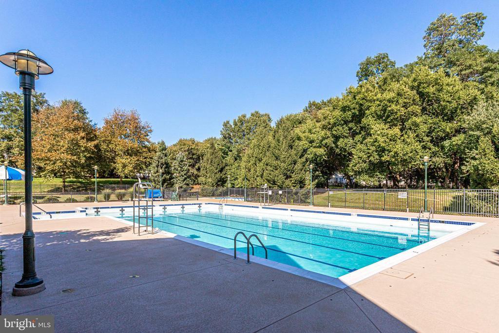 Just One of the Community Pools - 42972 THORNBLADE CIR, BROADLANDS