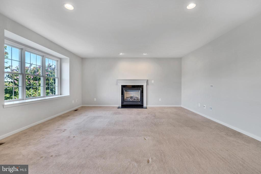 Family Room w/ Gas Fireplace - 20373 MEDALIST DR, ASHBURN