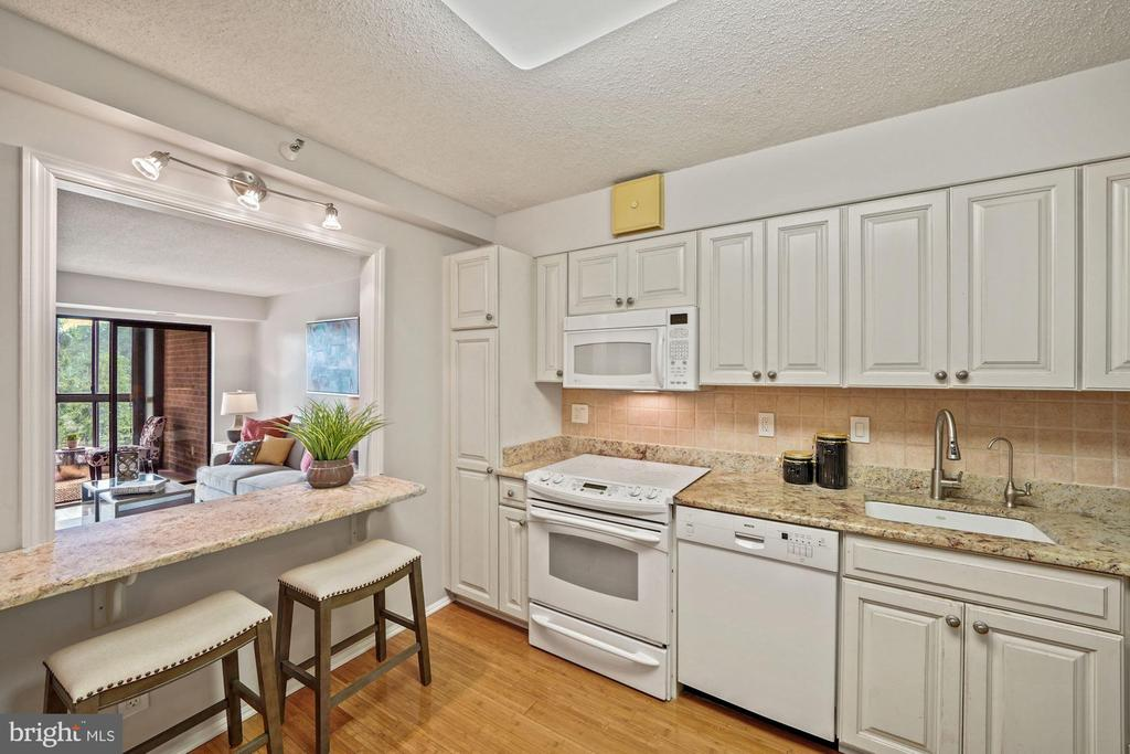 Kitchen pass-through window - 1600 N OAK ST #525, ARLINGTON