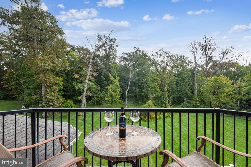 Balcony off of Owner's Suite - 19186 CHARANDY DR, LEESBURG