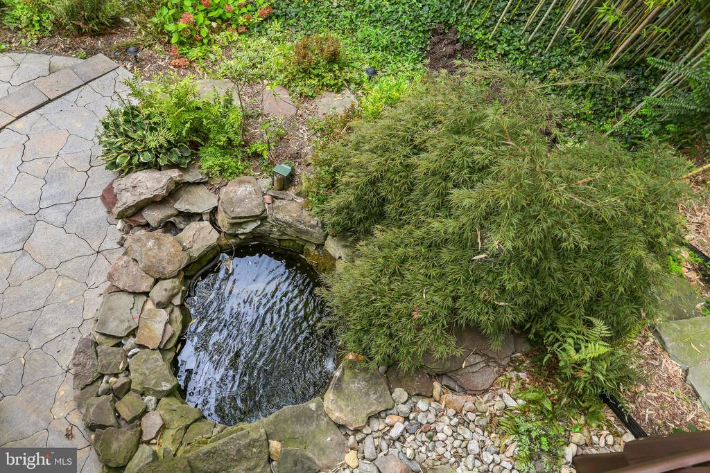 Garden and Pond - 408 JACKSON PL, ALEXANDRIA