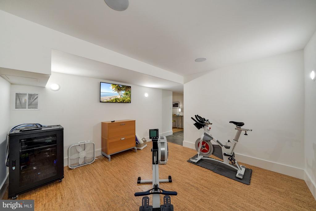 Lower Level Gym 2 - 6649 VAN WINKLE DR, FALLS CHURCH