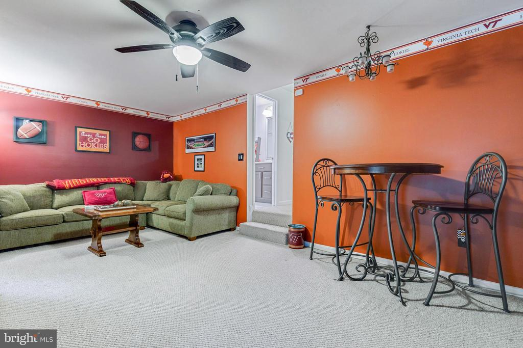 VERY LARGE family room on lower level - 7157 LAKE COVE DR, ALEXANDRIA