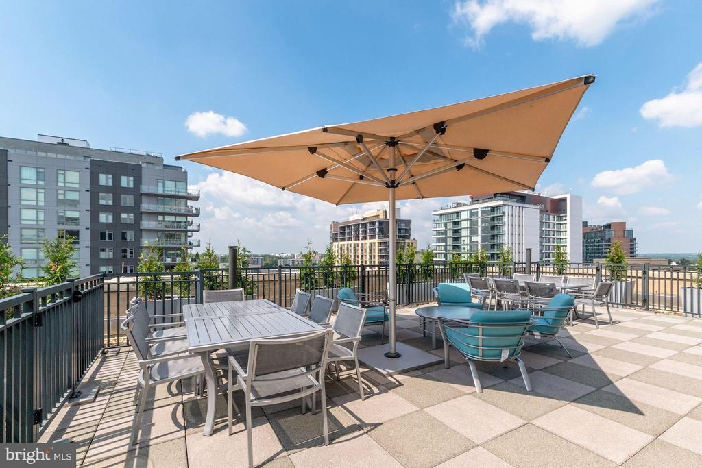 Rooftop - 7710 WOODMONT AVE #1102, BETHESDA