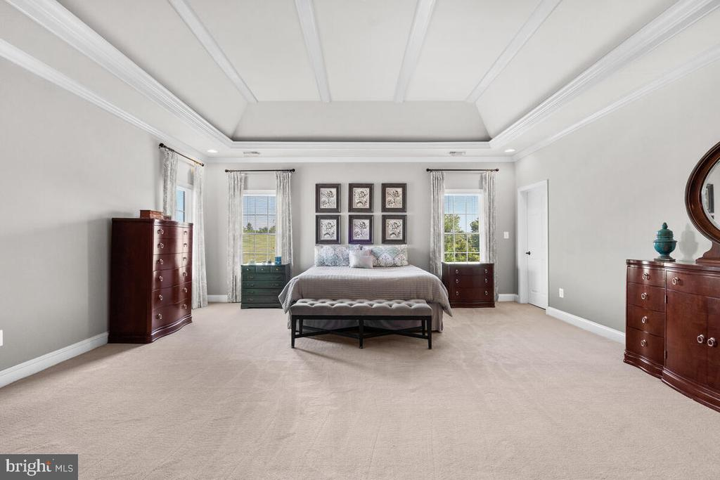 Master suite with coffered ceilings. - 17566 TOBERMORY PL, LEESBURG