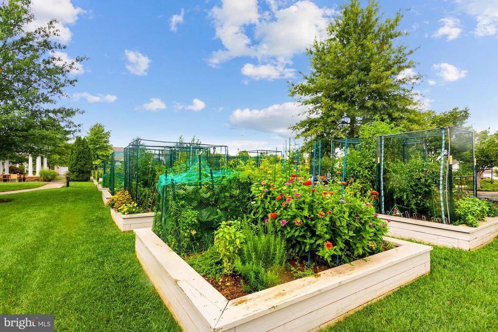 Oh So Charming Community Garden Plots! - 20505 LITTLE CREEK TER #302, ASHBURN