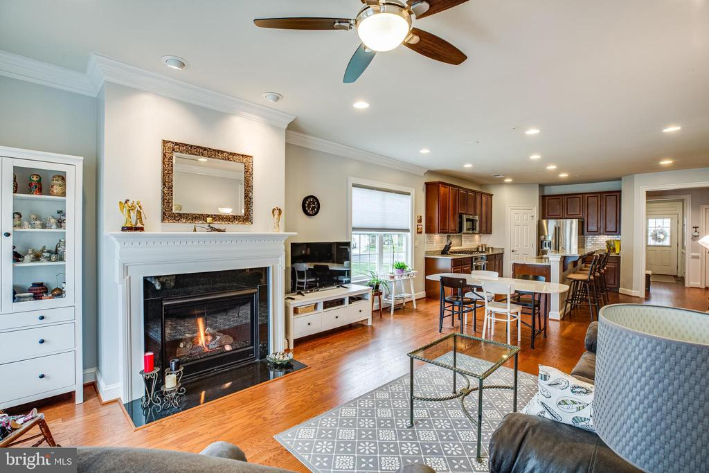 Fireplace, wood floors, top-down/bottom up blinds! - 238 LONG POINT DR, FREDERICKSBURG
