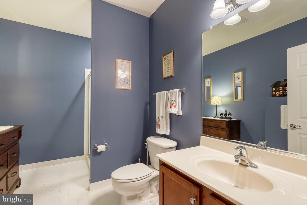 Gorgeous Hall Bath - 8635 LAROQUE RUN DR, FREDERICKSBURG