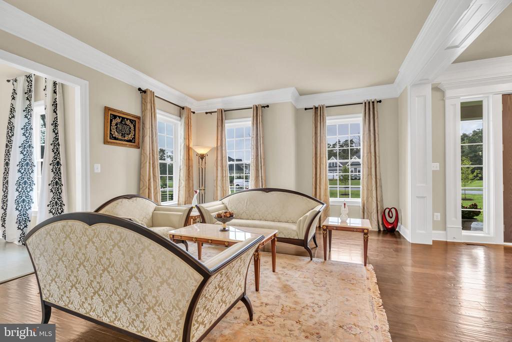 Large Living Room w/Crown Molding - 41219 TRAMINETTE CT, ASHBURN