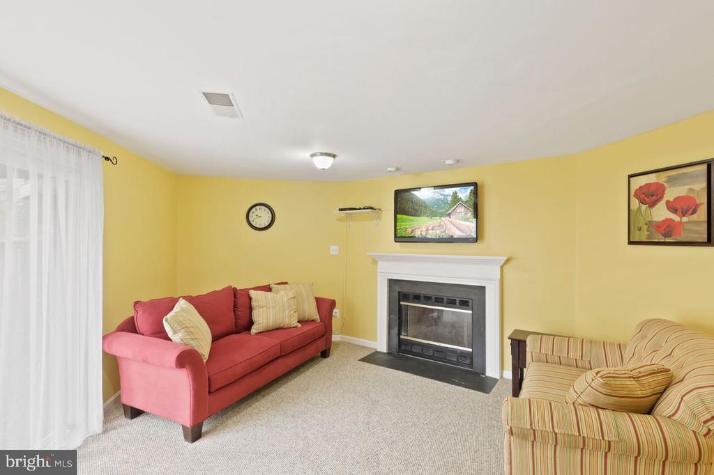 Cozy fireplace - TV conveys - 22082 MANNING SQ, STERLING