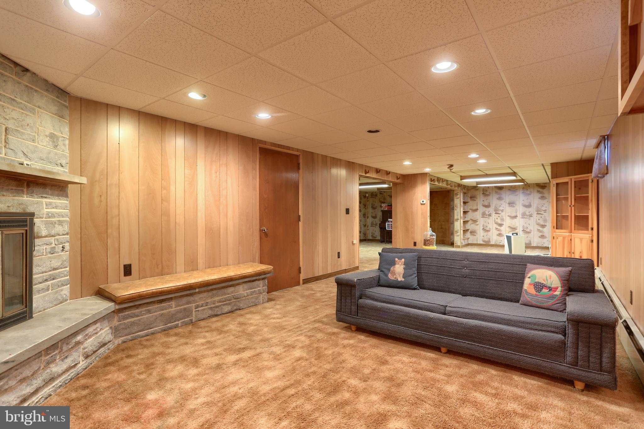 Lower level family room!