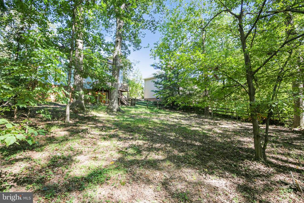 Vew from the trees - 11955 GREY SQUIRREL LN, RESTON
