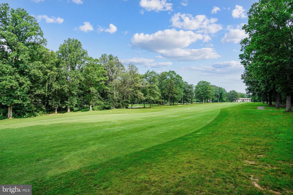 Golf - 11955 GREY SQUIRREL LN, RESTON