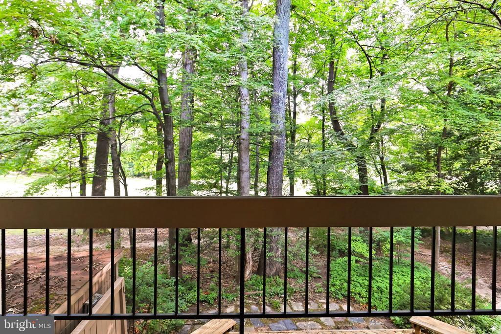 View from Living Room deck - 11704 NEWBRIDGE CT, RESTON