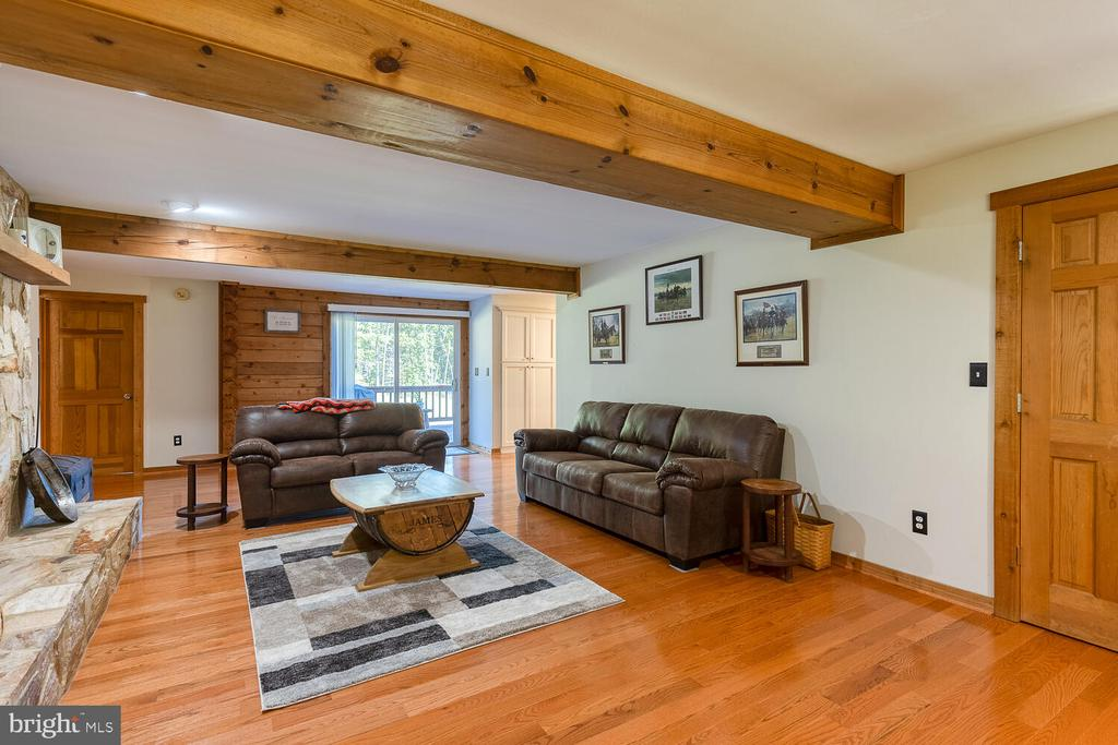 Family room with propane fireplace - 29471 NEW HAMPSHIRE RD, RHOADESVILLE
