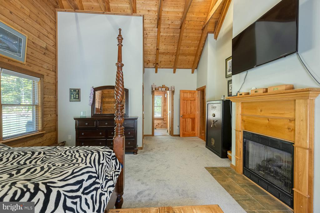 Primary bedroom with propane fireplace - 29471 NEW HAMPSHIRE RD, RHOADESVILLE
