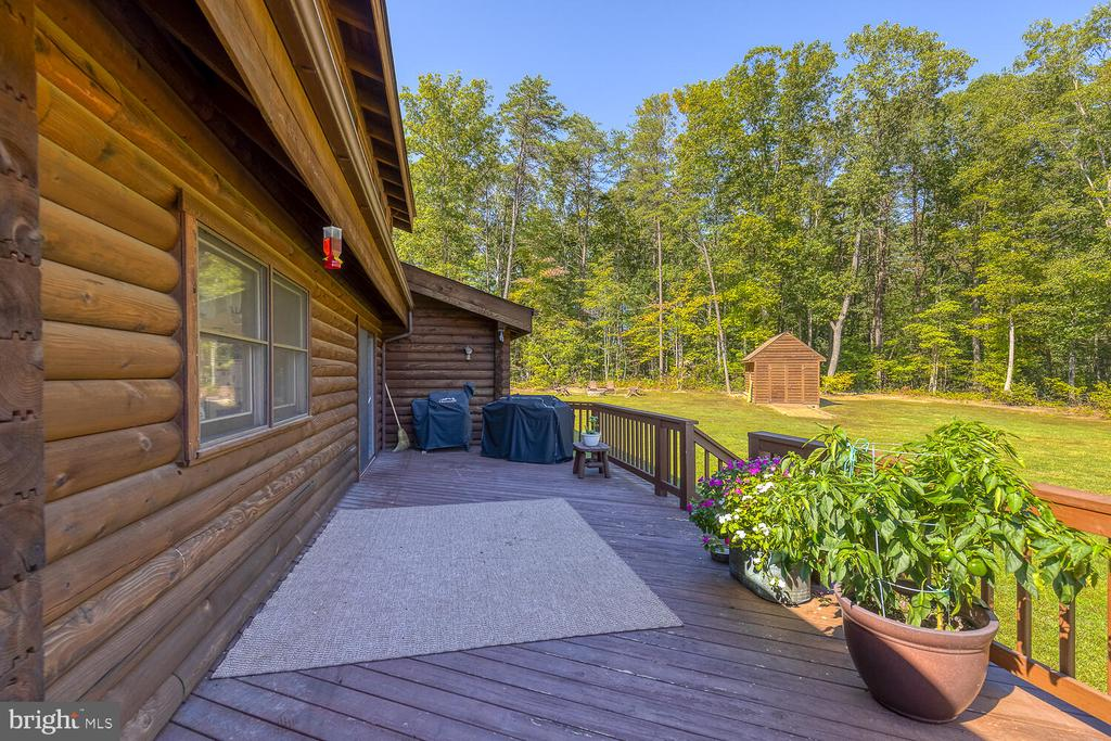 Large rear deck overlooking the beautiful yard - 29471 NEW HAMPSHIRE RD, RHOADESVILLE