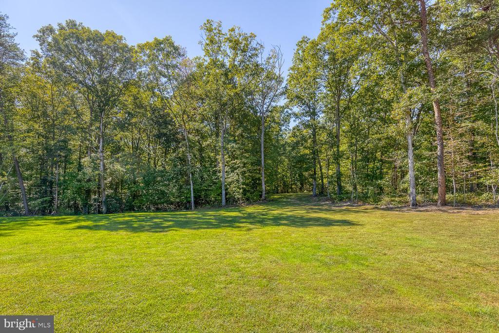 Beautiful front yard - 29471 NEW HAMPSHIRE RD, RHOADESVILLE