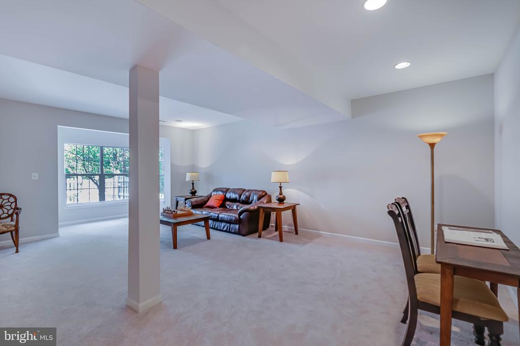Finished lower level with walkout to patio - 19741 ESTANCIA TER, ASHBURN