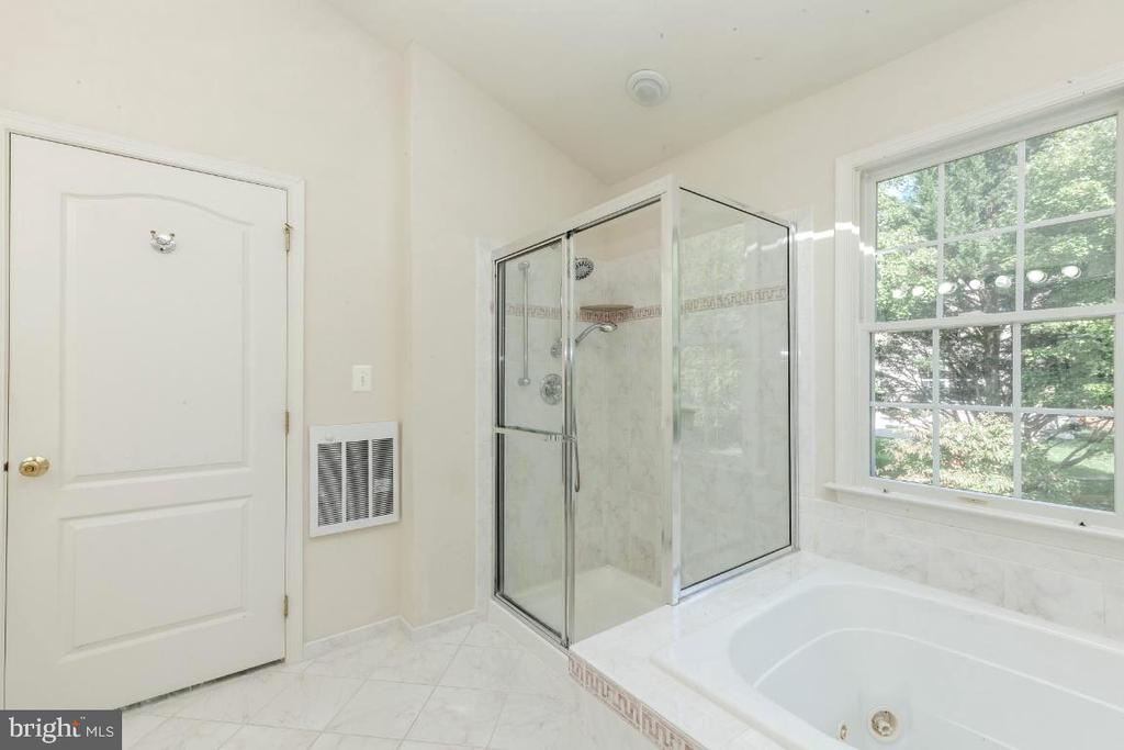 Owner Suite is Custom with Shower and Jacuzzi Tub - 47430 RIVERBANK FOREST PL, STERLING