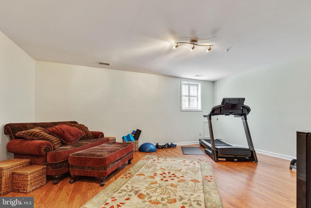 Lower Level Recreation room - 717 KENT OAKS WAY, GAITHERSBURG