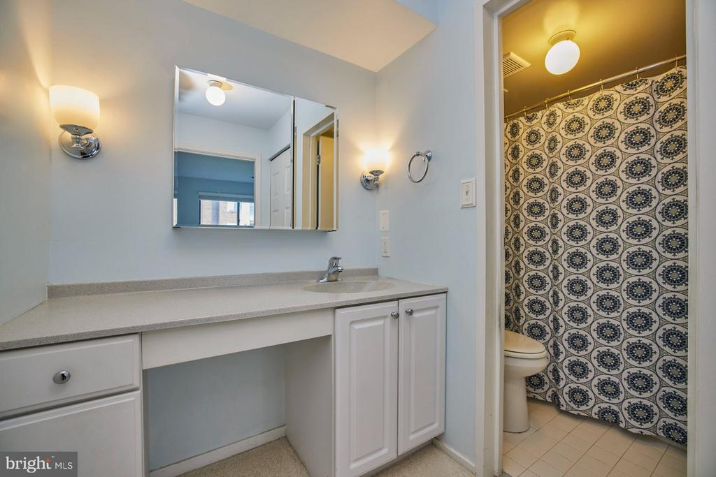 Primary Bathroom - 10300 BUSHMAN DR #204, OAKTON