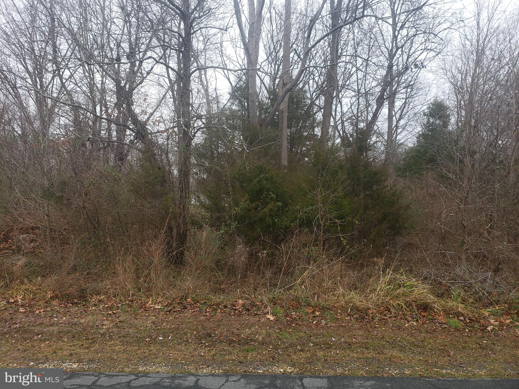 8236 LAKEVIEW DRIVE, POMFRET, MD 20675