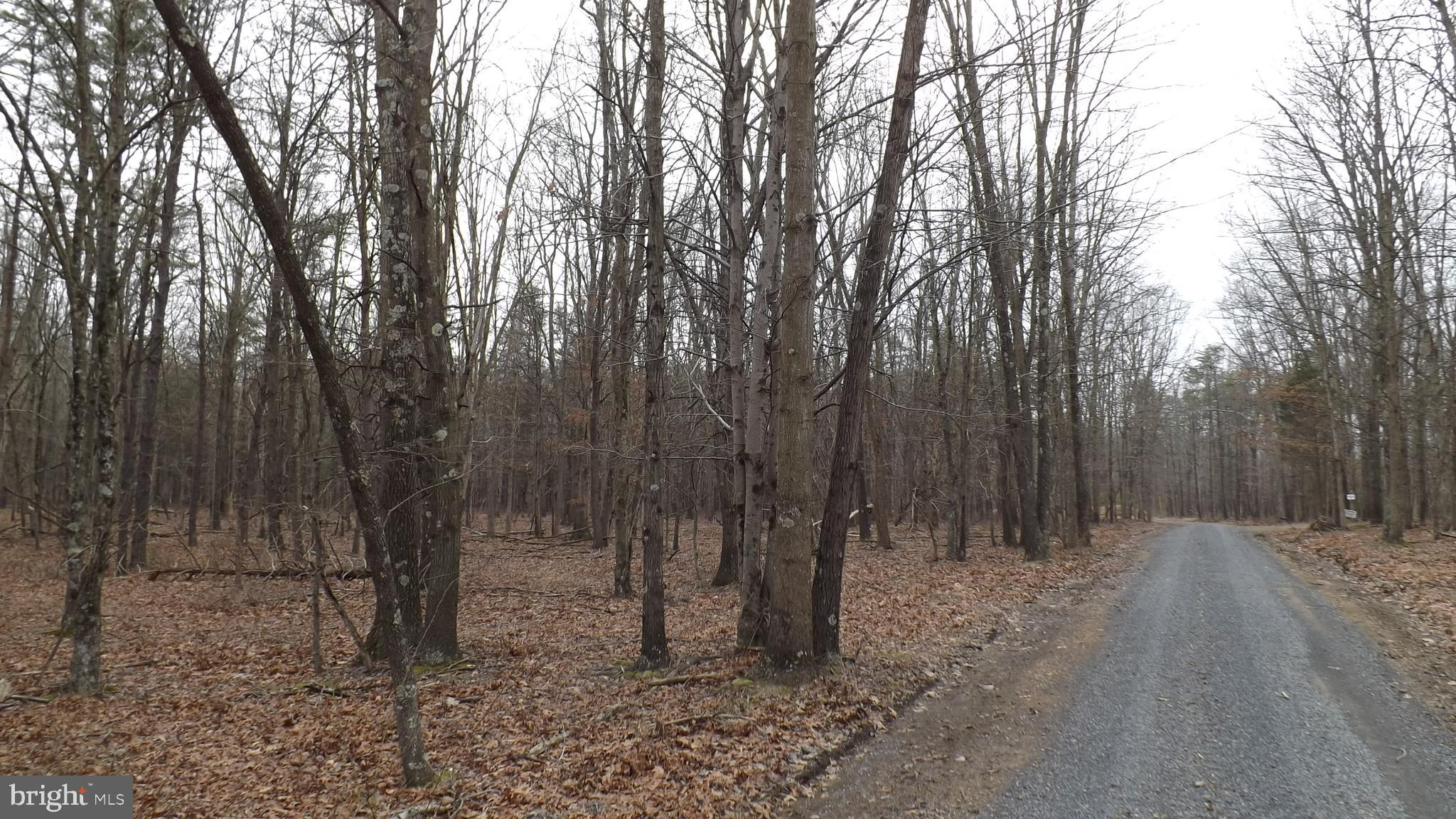 10 SOUTH BRANCH ROAD, LEVELS, WV 25431