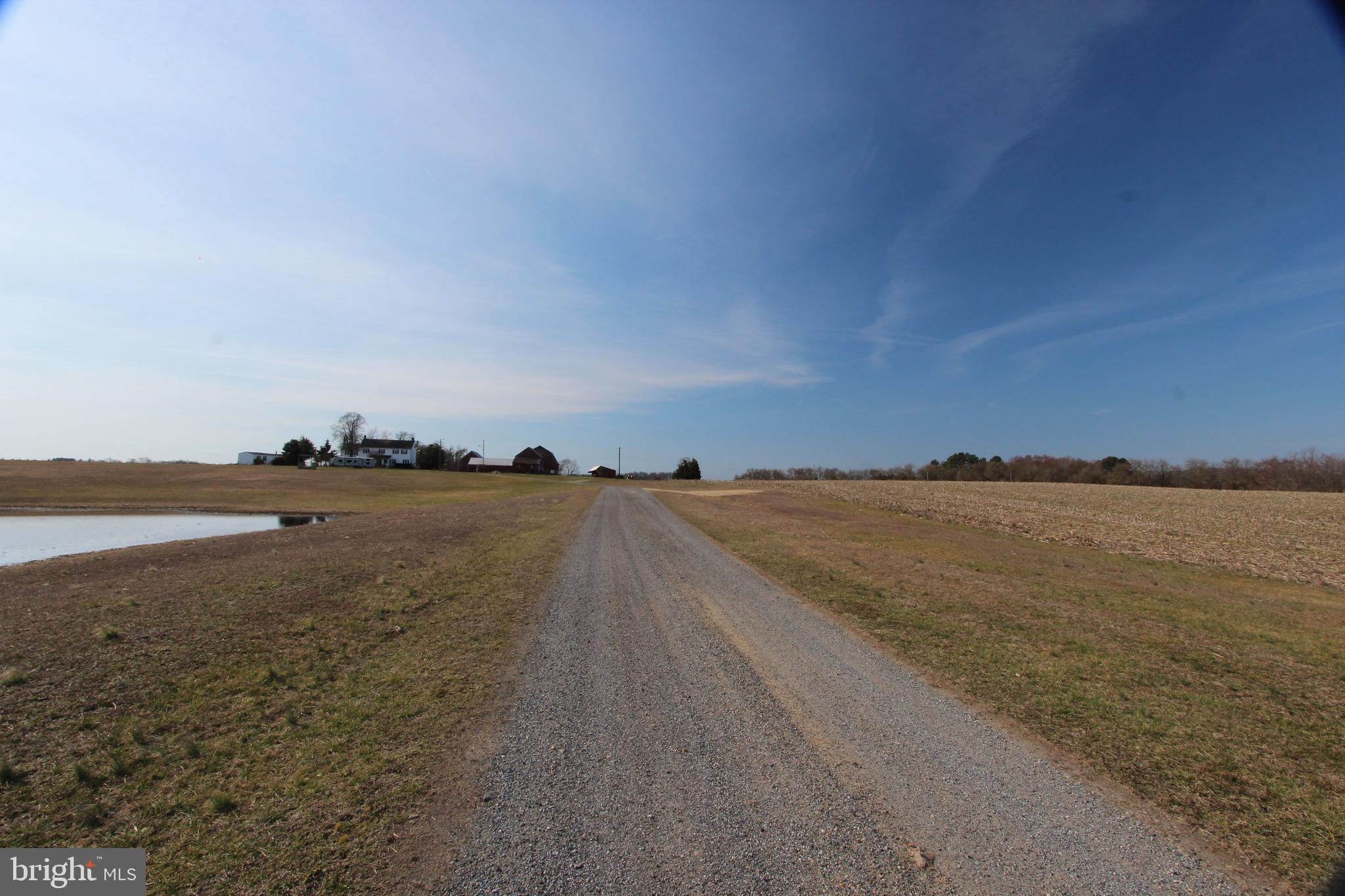 Property, Zoned Suburban, 234.2 Acres with lots of Possibilities.  Backs to Augustine Creek and State Wildlife Management Area.   Includes 3 Tax Parcels know as 950 Port Penn for a total of 234.2 Acres all to be sold as together. Tax Parcel 13-014.00-038 :  223.2 Acres  (120 Ac being farmed, 30 Ac Clear Land (house, etc),  40+ Ac of Woods, 30+ Ac of Wetlands) & 2300 sq ft 2 story Farmhouse, 2 barns, 3 car garage, and several out buildings. Tax Parcel 13-009.00-055  -  11 Acres (8 Acres being farmed, 2 Acres of Woods, 1 Acre of Wetlands).  Road Frontage estimated at 50 ft. Reference MLS #'s: DENC496416 & DENC496436. 13-014.00-038.M.A001  -2nd home- Mobile Home. More Information to Come! All Buildings offered As-Is.